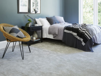 Apollo Comfort Snipe Carpet