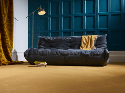 A living room carpeted with Westend Velvet Pumpkin